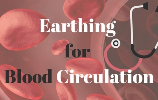 Earthing for Blood Circulation and Blood Flow