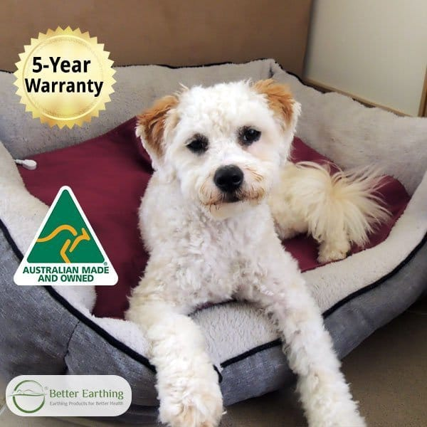 earthing pet pad by better earthing